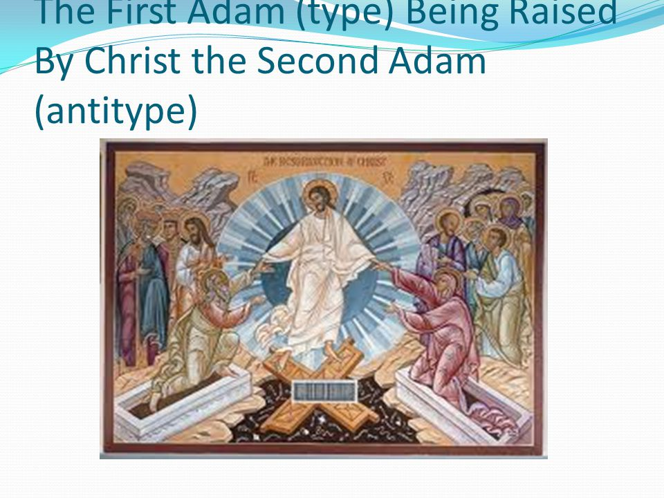 The First Adam (type) Being Raised By Christ the Second Adam (antitype)