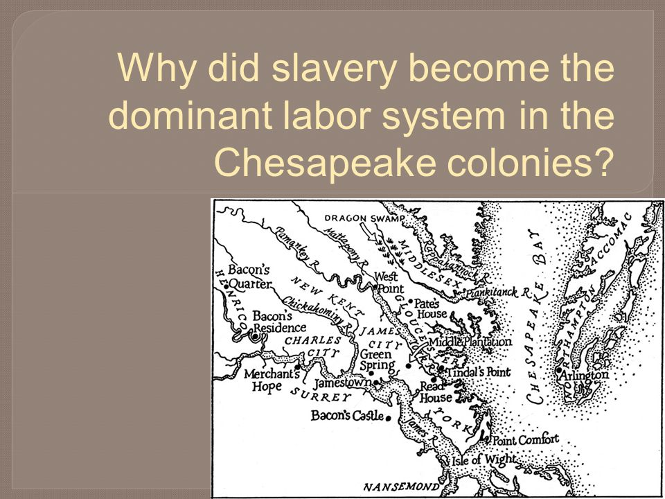 Why did slavery become the dominant labor system in the Chesapeake colonies?