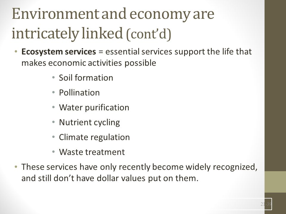 Environment and economy are intricately linked (cont'd) Ecosystem services = essential services support the life that makes economic activities possible Soil formation Pollination Water purification Nutrient cycling Climate regulation Waste treatment These services have only recently become widely recognized, and still don't have dollar values put on them.