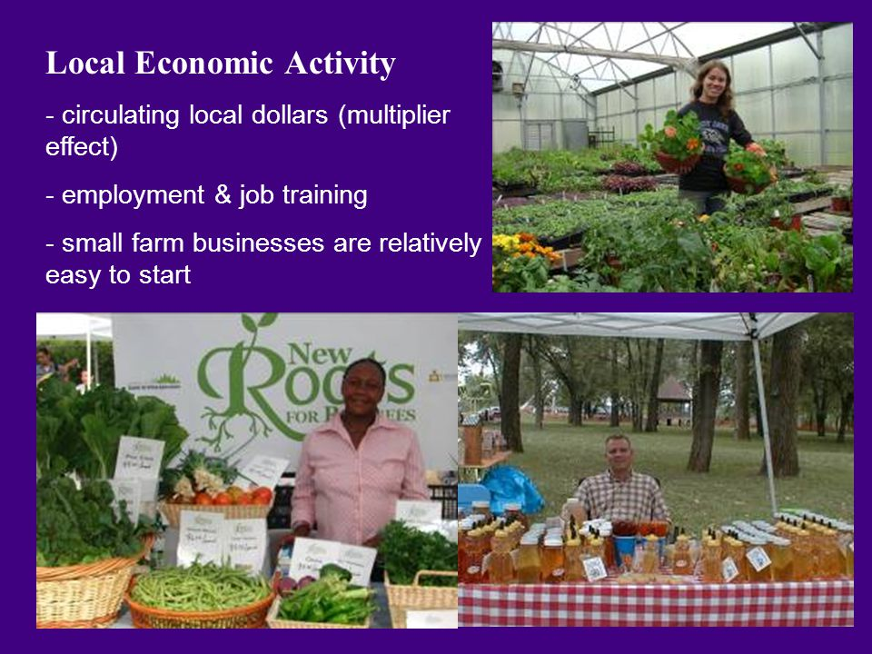 Local Economic Activity - circulating local dollars (multiplier effect) - employment & job training - small farm businesses are relatively easy to start