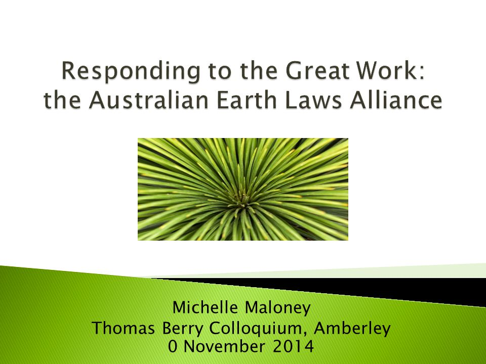 Michelle Maloney Thomas Berry Colloquium, Amberley 0 November 2014
