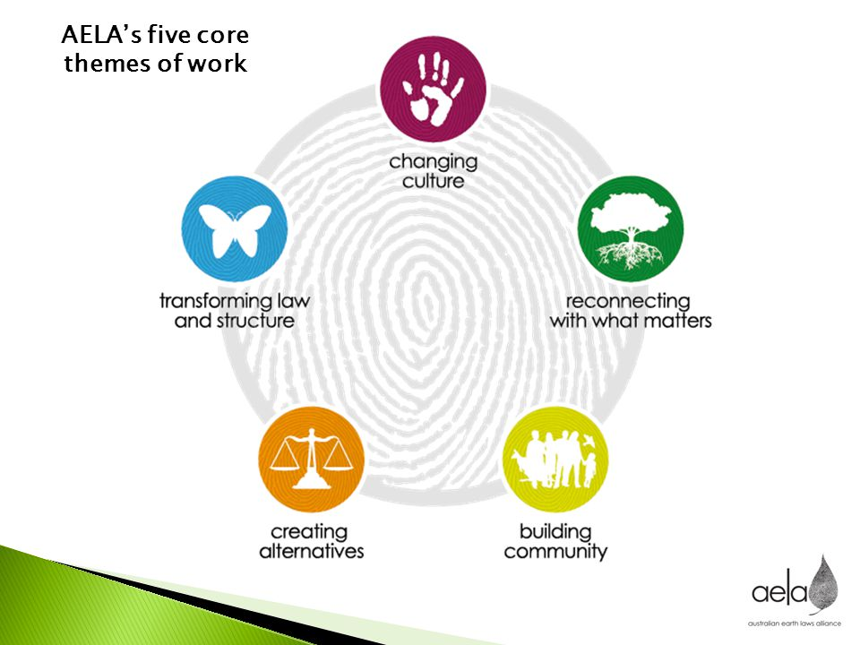 AELA's five core themes of work