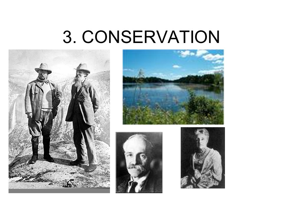 3. CONSERVATION
