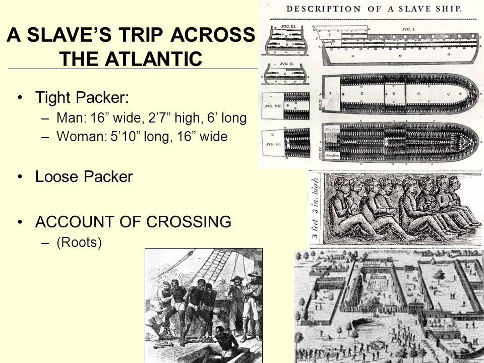 "A SLAVE'S TRIP ACROSS THE ATLANTIC Tight Packer: –Man: 16"" wide, 2'7"" high, 6' long –Woman: 5'10"" long, 16"" wide Loose Packer ACCOUNT OF CROSSING –(Ro"