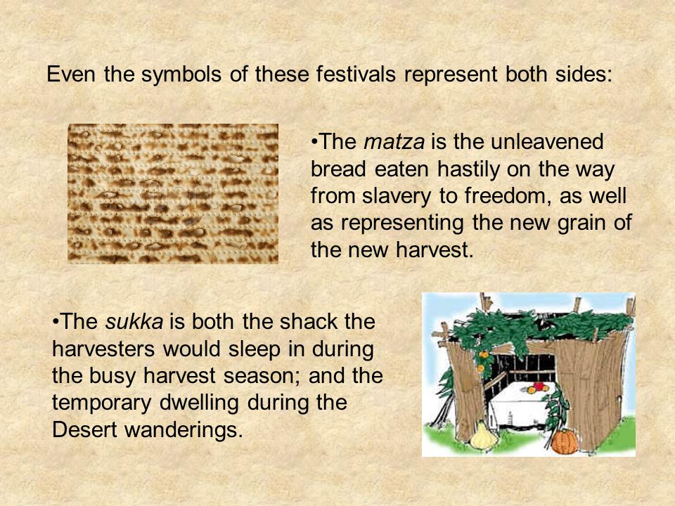 The matza is the unleavened bread eaten hastily on the way from slavery to freedom, as well as representing the new grain of the new harvest.