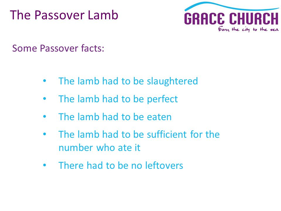 Some Passover facts: The Passover Lamb The lamb had to be slaughtered The lamb had to be perfect The lamb had to be eaten The lamb had to be sufficient for the number who ate it There had to be no leftovers