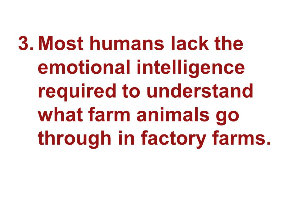 3.Most humans lack the emotional intelligence required to understand what farm animals go through in factory farms.