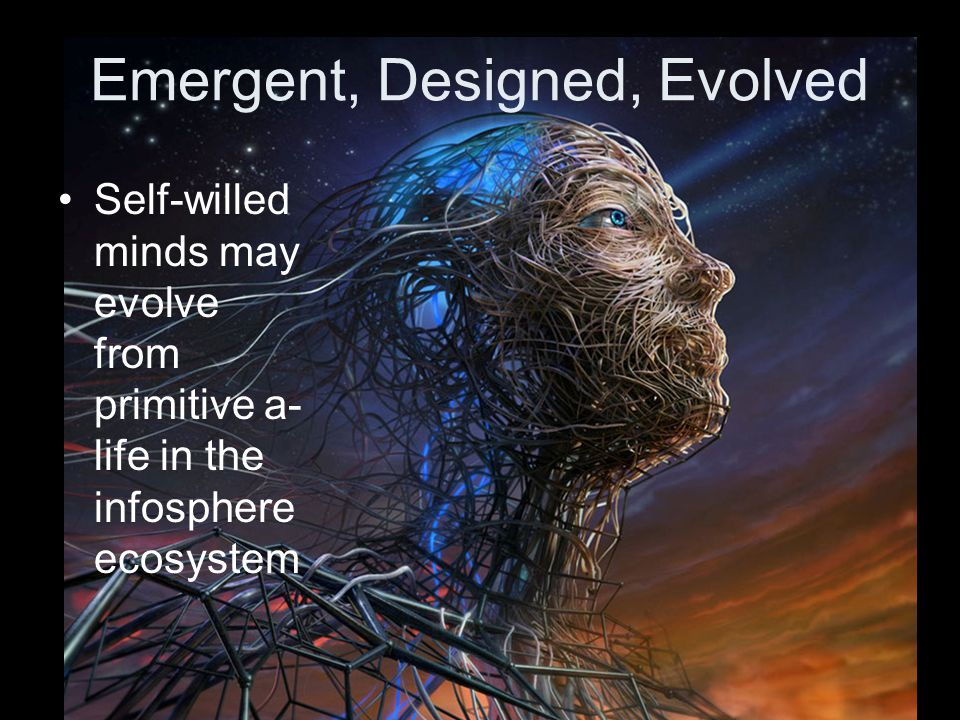 Emergent, Designed, Evolved Self-willed minds may evolve from primitive a- life in the infosphere ecosystem
