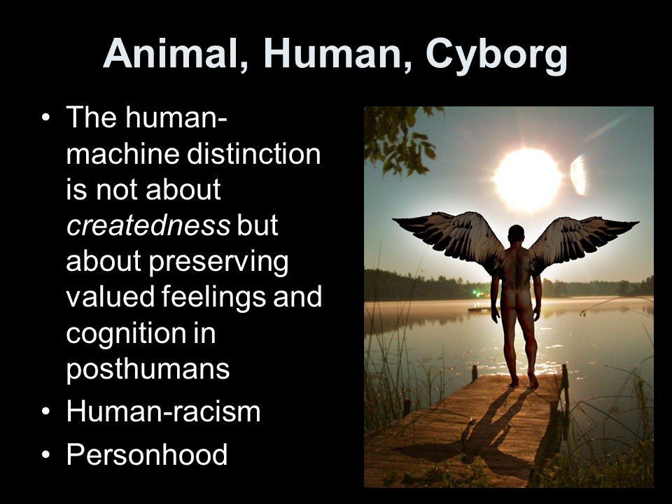 Animal, Human, Cyborg The human- machine distinction is not about createdness but about preserving valued feelings and cognition in posthumans Human-racism Personhood