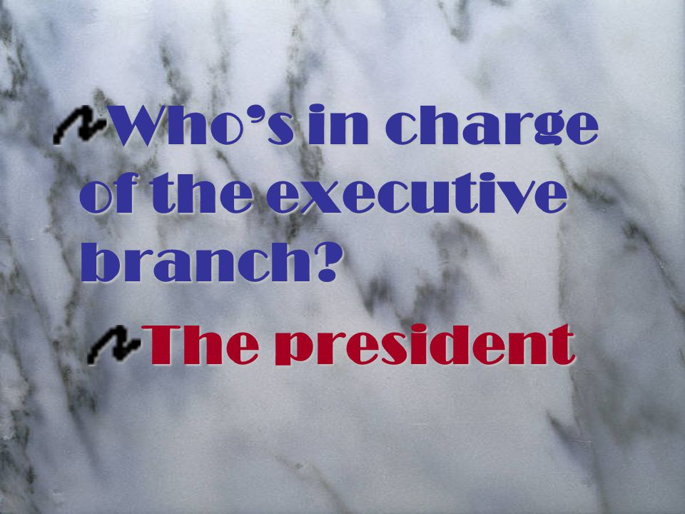 Who's in charge of the executive branch The president