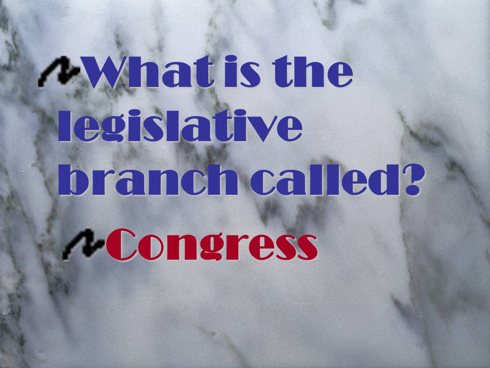 What is the legislative branch called Congress