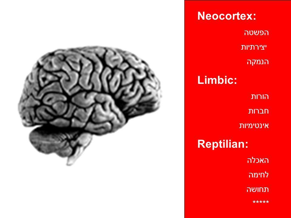 Neocortex: הפשטה יצירתיות הנמקה Limbic: הורות חברות אינטימיות Reptilian: האכלה לחימה תחושה *****