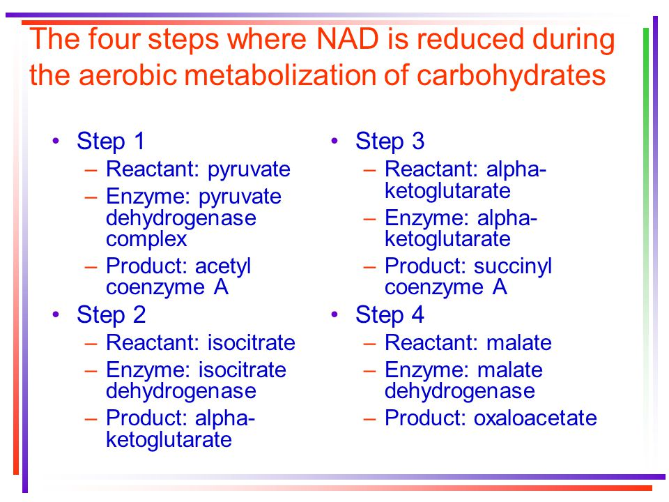 The four steps where NAD is reduced during the aerobic metabolization of carbohydrates Step 1 –Reactant: pyruvate –Enzyme: pyruvate dehydrogenase complex –Product: acetyl coenzyme A Step 2 –Reactant: isocitrate –Enzyme: isocitrate dehydrogenase –Product: alpha- ketoglutarate Step 3 –Reactant: alpha- ketoglutarate –Enzyme: alpha- ketoglutarate –Product: succinyl coenzyme A Step 4 –Reactant: malate –Enzyme: malate dehydrogenase –Product: oxaloacetate
