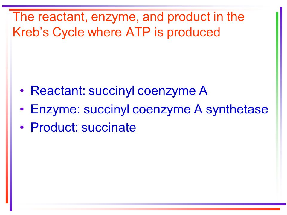 The reactant, enzyme, and product in the Kreb's Cycle where ATP is produced Reactant: succinyl coenzyme A Enzyme: succinyl coenzyme A synthetase Product: succinate
