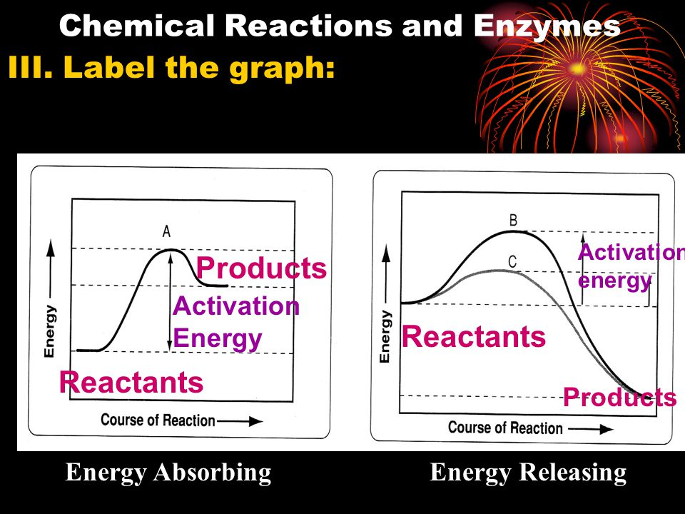 The speed of a reaction depends on whether is absorbs or releases energy.