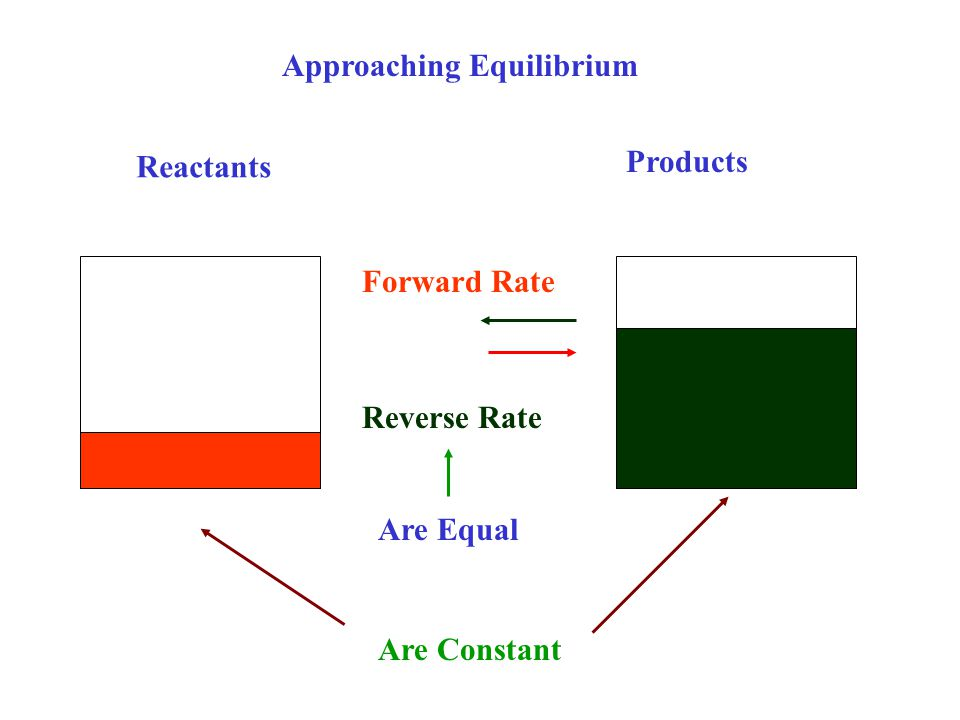 Reactants Products Approaching Equilibrium Reverse Rate Forward Rate Are Equal Are Constant