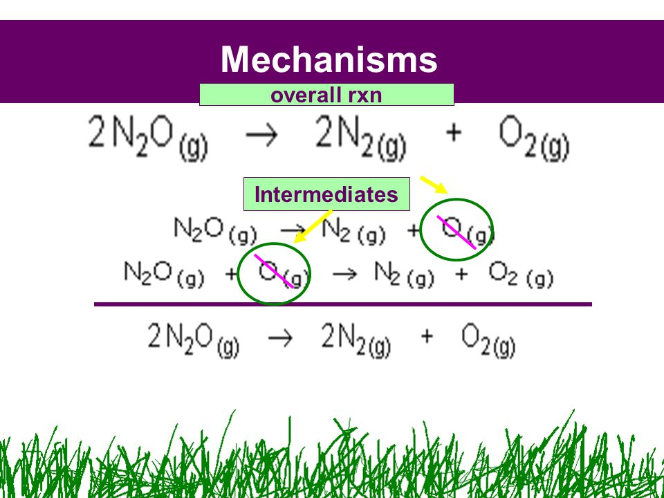 Mechanisms Intermediates overall rxn