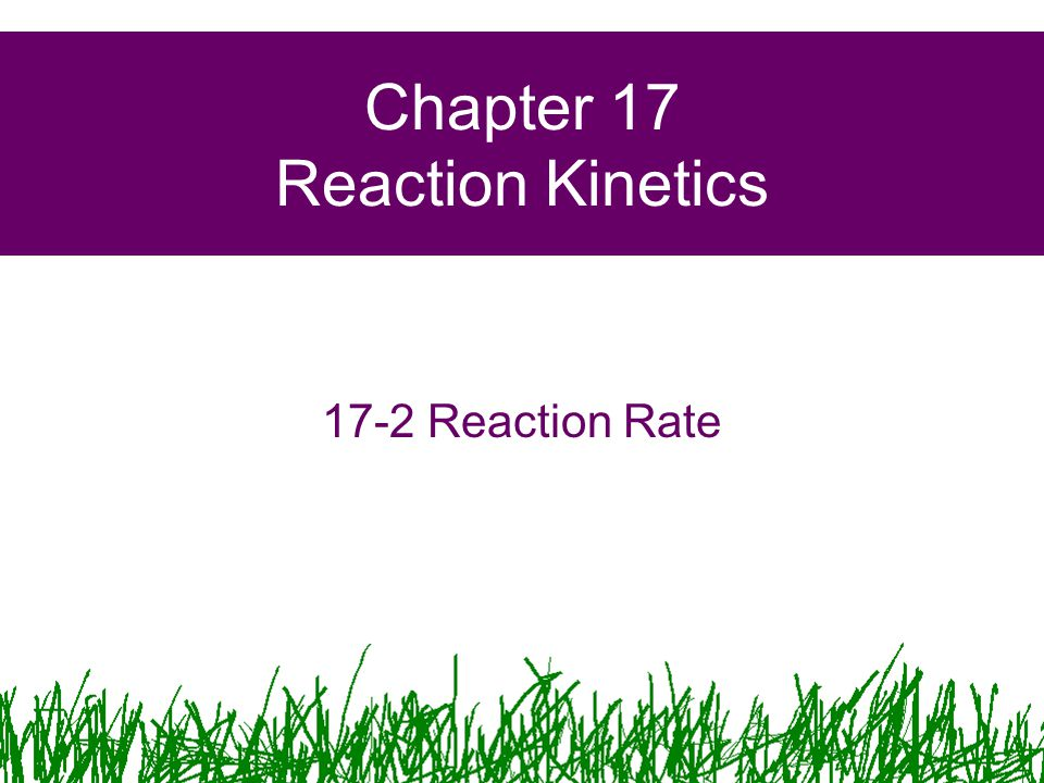 Chapter 17 Reaction Kinetics 17-2 Reaction Rate