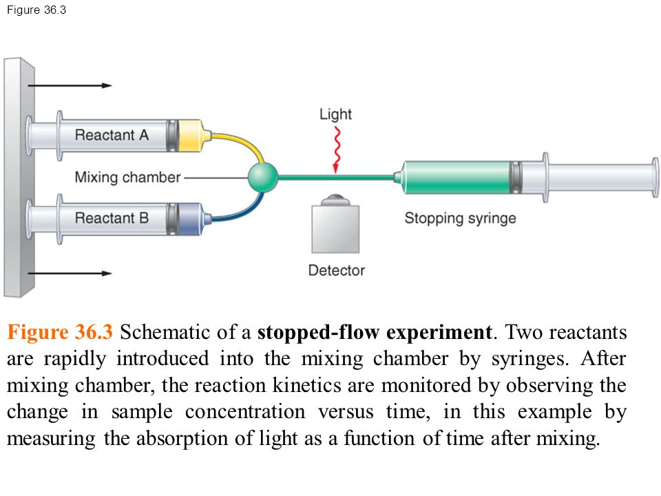Figure 36.3 Figure 36.3 Schematic of a stopped-flow experiment.