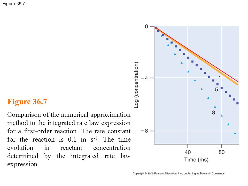 Figure 36.7 Comparison of the numerical approximation method to the integrated rate law expression for a first-order reaction.