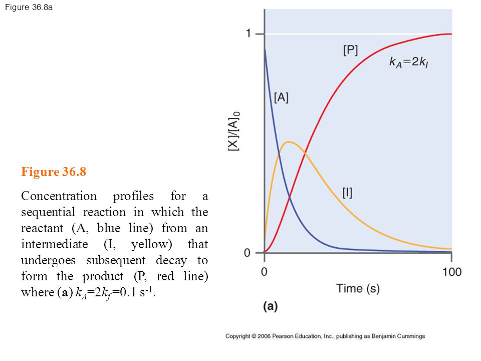 Figure 36.8a Figure 36.8 Concentration profiles for a sequential reaction in which the reactant (A, blue line) from an intermediate (I, yellow) that undergoes subsequent decay to form the product (P, red line) where (a) k A =2k f =0.1 s -1.