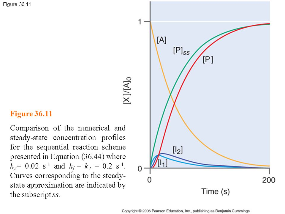 Figure 36.11 Comparison of the numerical and steady-state concentration profiles for the sequential reaction scheme presented in Equation (36.44) where k A = 0.02 s -1 and k f = k 2 = 0.2 s -1.