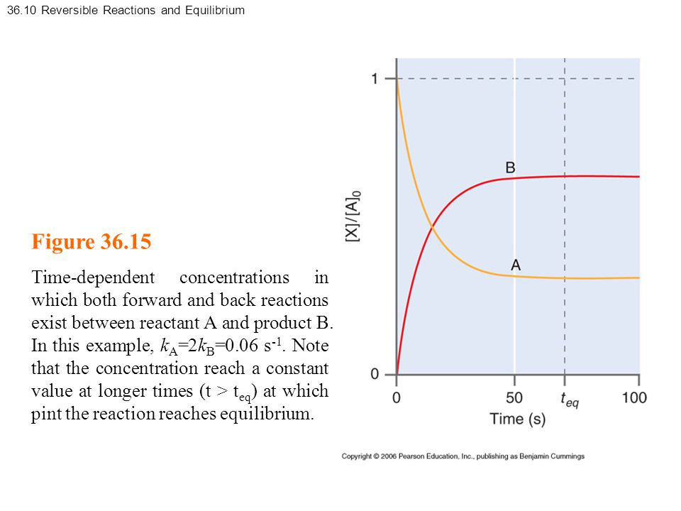 36.10 Reversible Reactions and Equilibrium Figure 36.15 Time-dependent concentrations in which both forward and back reactions exist between reactant A and product B.