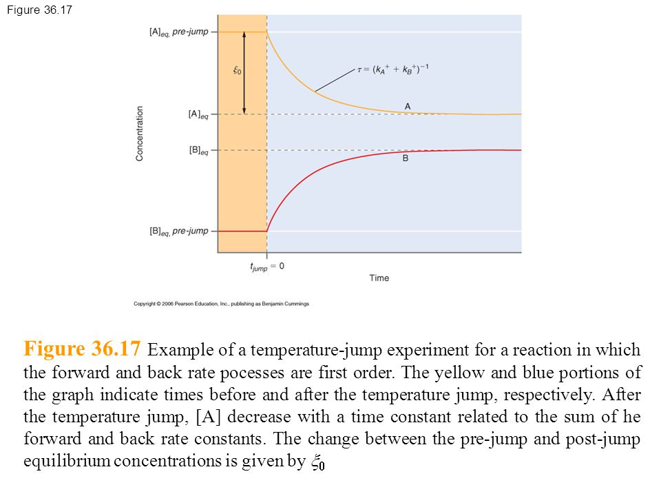 Figure 36.17 Figure 36.17 Example of a temperature-jump experiment for a reaction in which the forward and back rate pocesses are first order.