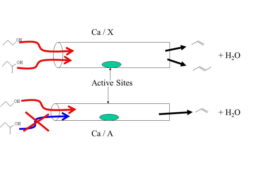 Active Sites + H 2 O Ca / X + H 2 O Ca / A