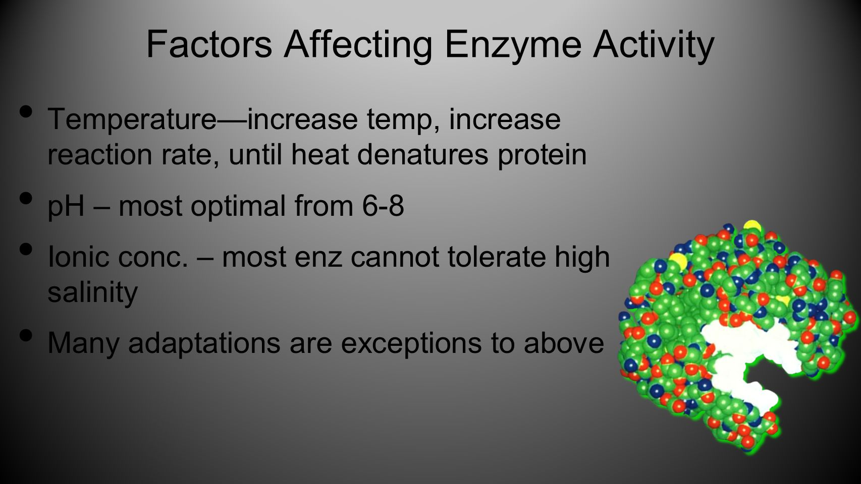 Factors Affecting Enzyme Activity Temperature—increase temp, increase reaction rate, until heat denatures protein pH – most optimal from 6-8 Ionic conc.