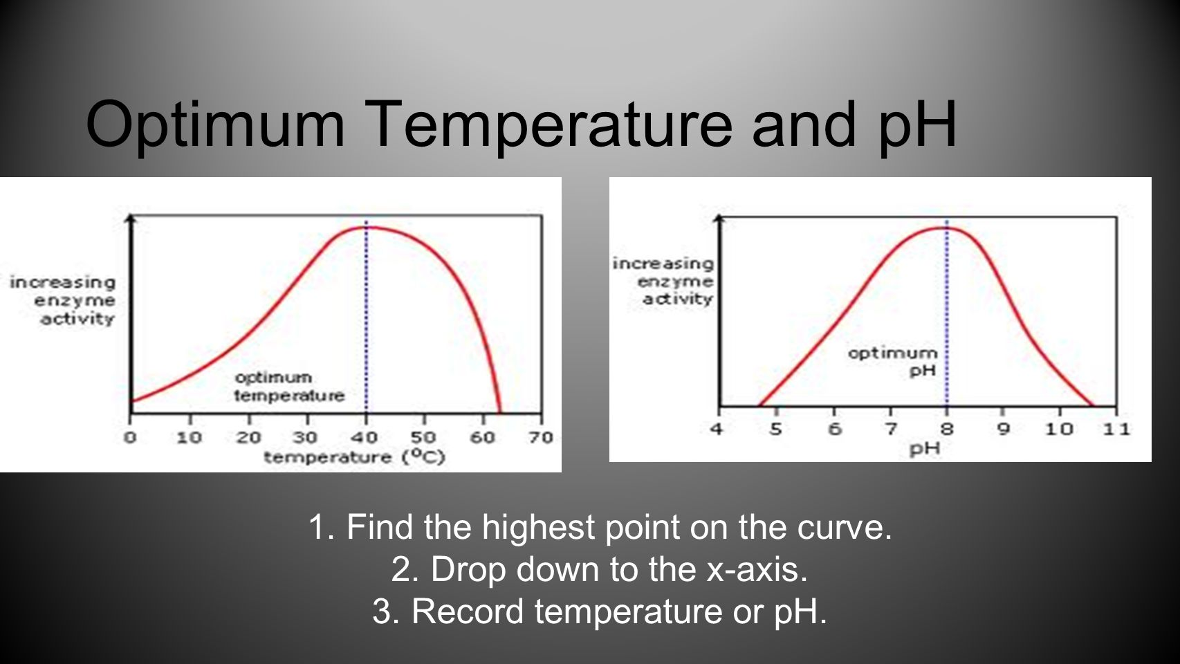 Optimum Temperature and pH 1.Find the highest point on the curve. 2.Drop down to the x-axis. 3.Record temperature or pH.