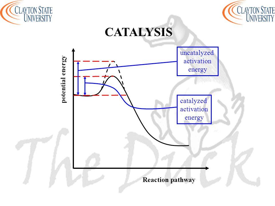 Reaction pathway potential energy uncatalyzed activation energy catalyzed activation energy CATALYSIS