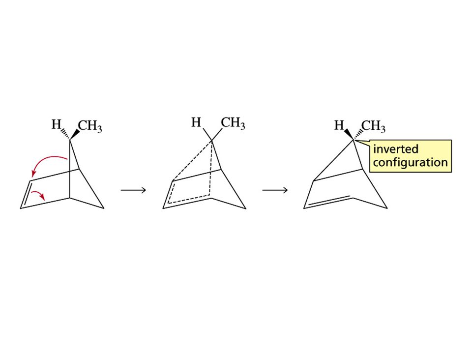 Pericyclic Reactions in Biological Systems