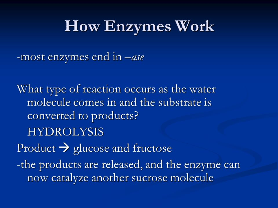 How Enzymes Work -most enzymes end in –ase What type of reaction occurs as the water molecule comes in and the substrate is converted to products? HYD
