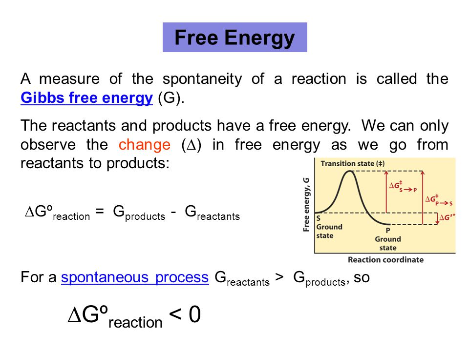 Free Energy A measure of the spontaneity of a reaction is called the Gibbs free energy (G). Gibbs free energy The reactants and products have a free e