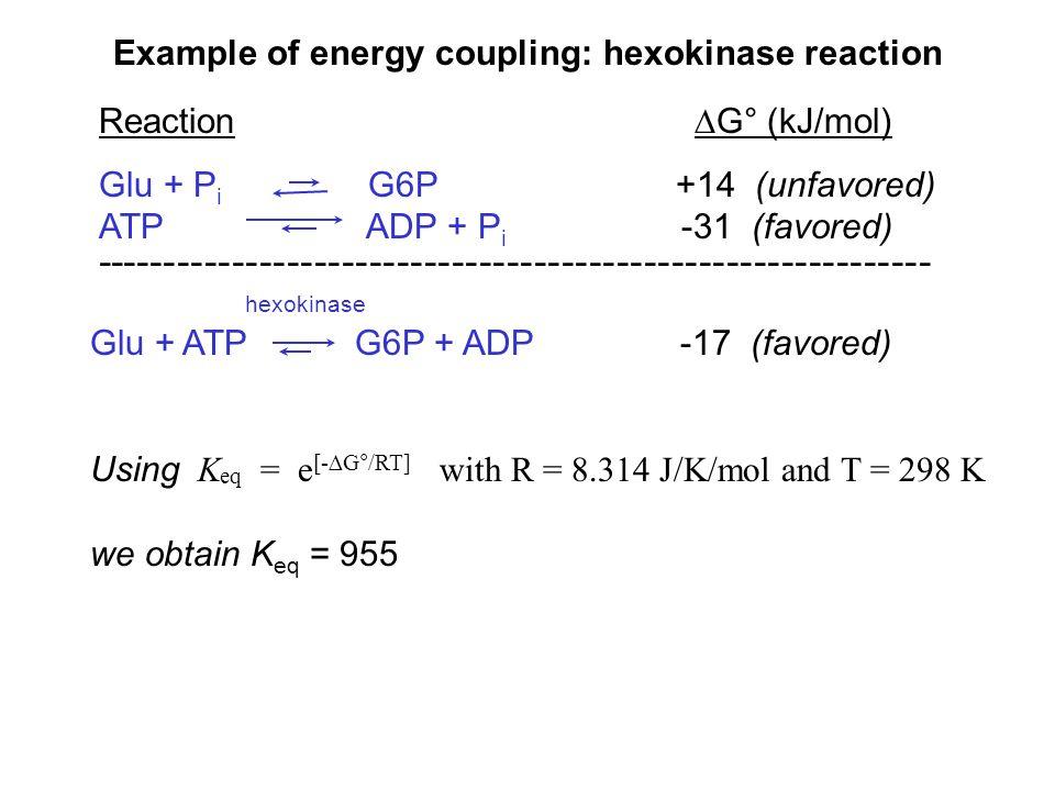 Example of energy coupling: hexokinase reaction Reaction ∆G° (kJ/mol) Glu + P i G6P +14 (unfavored) ATP ADP + P i -31 (favored) ----------------------