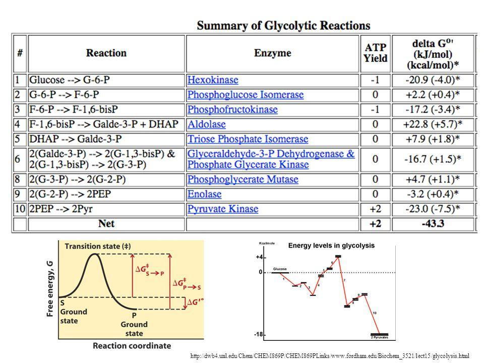http://dwb4.unl.edu/Chem/CHEM869P/CHEM869PLinks/www.fordham.edu/Biochem_3521/lect15/glycolysis.html