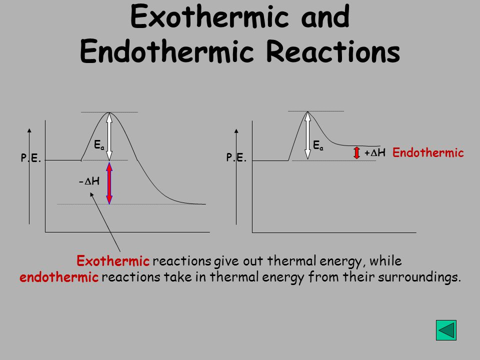 Exothermic and Endothermic Reactions Exothermic reactions give out thermal energy, while endothermic reactions take in thermal energy from their surroundings.