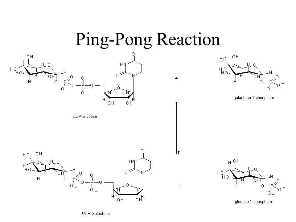 Ping-Pong Reaction