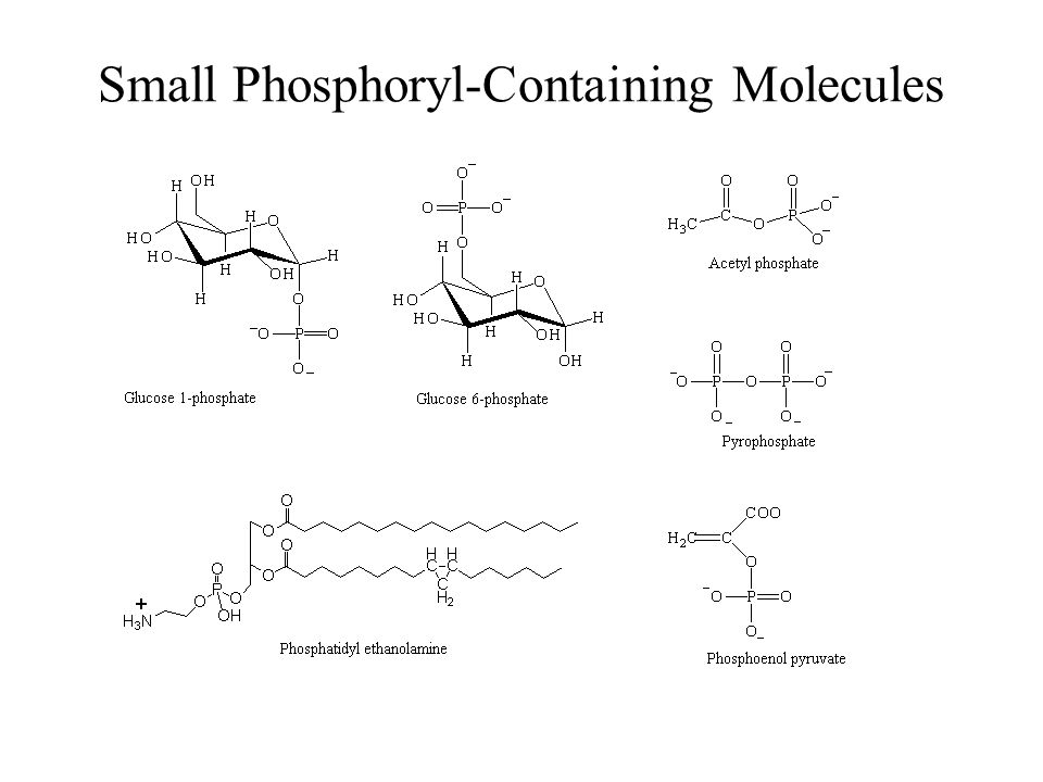 Small Phosphoryl-Containing Molecules