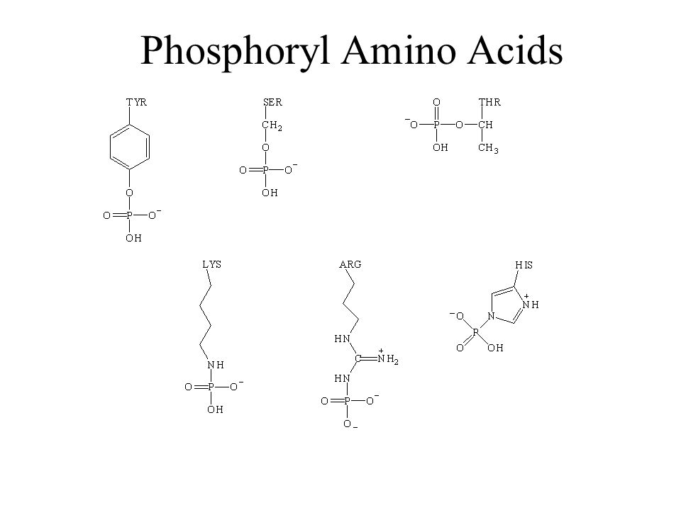 Classes of Phosphoryl Transfer In kinases, X is almost always ADP.