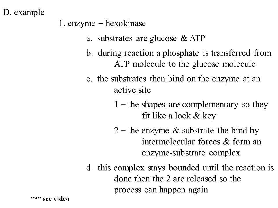 D. example 1. enzyme – hexokinase a. substrates are glucose & ATP b.