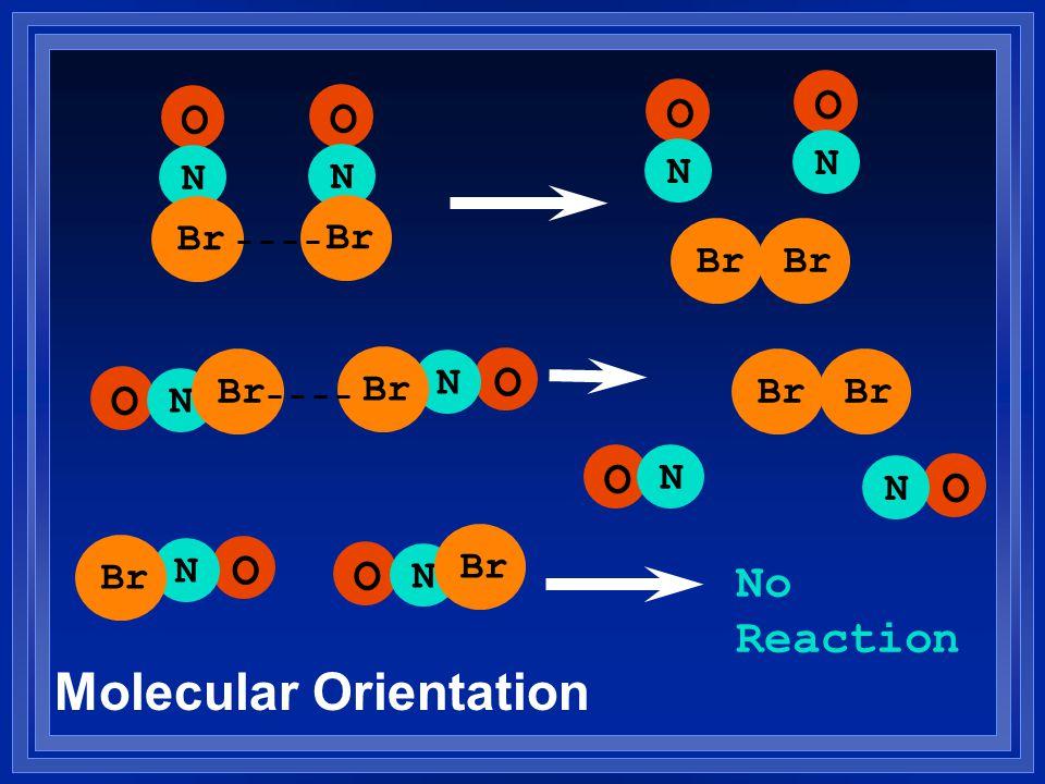O N Br O N O N O N O N O N O N O N No Reaction O N Br O N Molecular Orientation