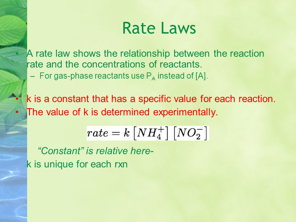 Reaction order Exponents tell the order of the reaction with respect to each reactant.