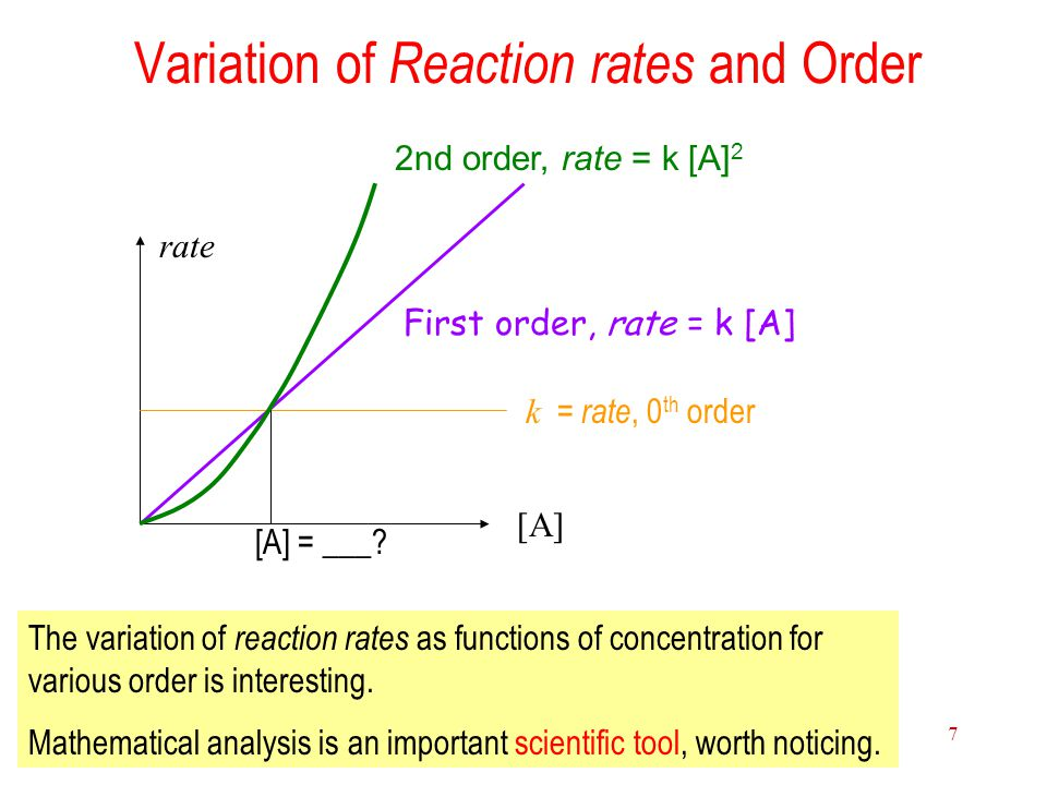 15 Chemical Kinetics 7 Variation of Reaction rates and Order First order, rate = k [A] k = rate, 0 th order [A] rate 2nd order, rate = k [A] 2 The var