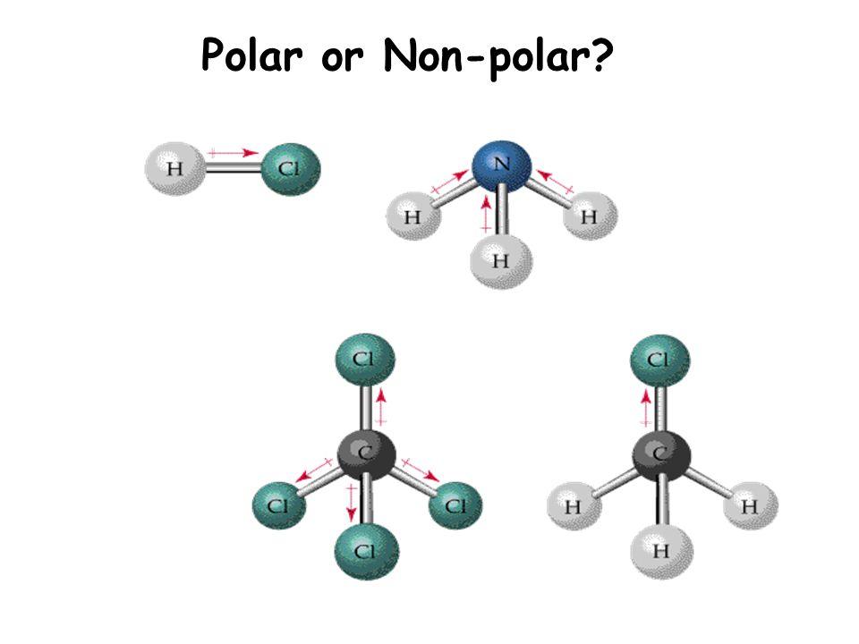 Polar or Non-polar