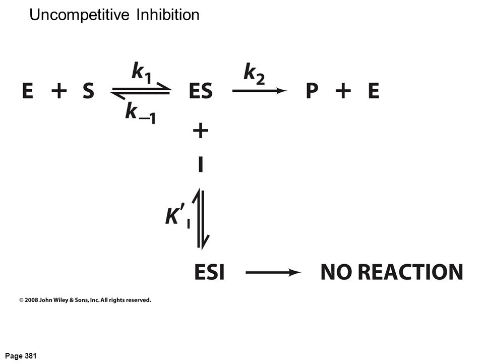 Page 381 Uncompetitive Inhibition