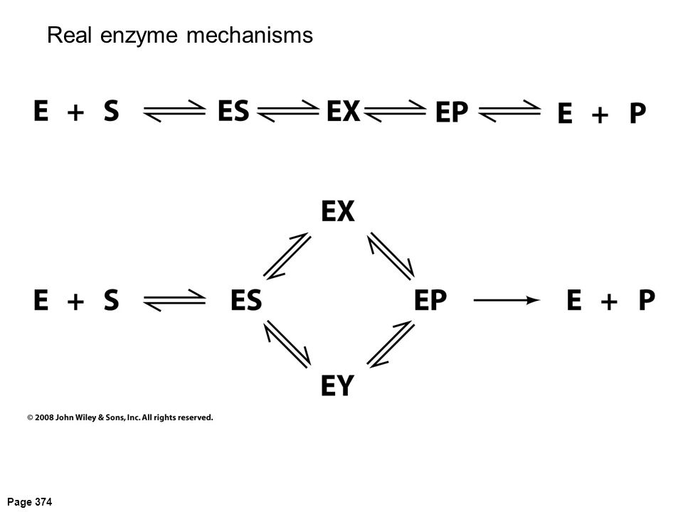 Page 374 Real enzyme mechanisms
