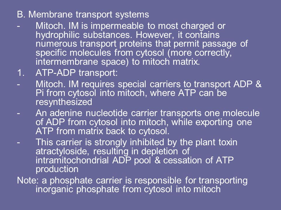B.Membrane transport systems -Mitoch. IM is impermeable to most charged or hydrophilic substances.