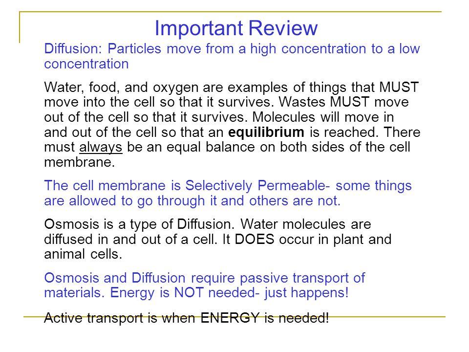 Reactants vs.